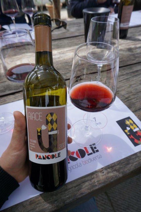 Sangiovese Aiace 2012 azienda Pancole