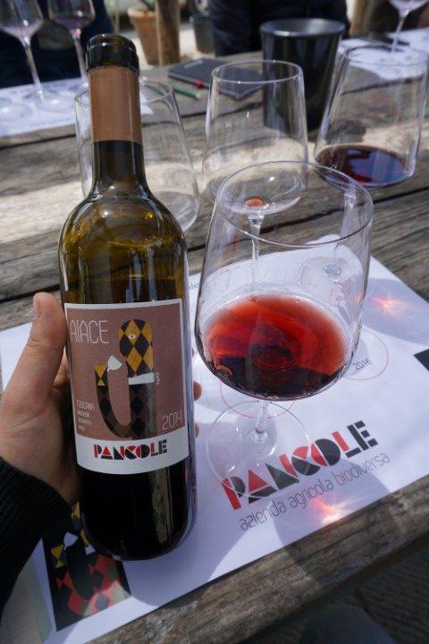 Sangiovese Aiace 2014 azienda Pancole