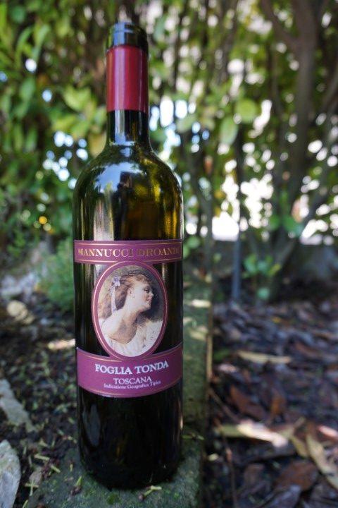 vino rosso Foglia Tonda azienda Mannucci Droandi