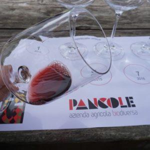 calice degustazione Aiace azienda Pancole